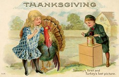 Tommy's First and Turkey's Last Picture on Thanksgiving (Alan Mays) Tags: pictures thanksgiving old november girls boys birds animals last vintage paper children cards typography photography funny holidays humorous comic photos antique humor photographers first illustrations ephemera photographs cameras poultry postcards type turkeys greetings 1910s fonts printed typefaces greetingcards