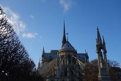 Notre-Dame de Paris (Sean Munson) Tags: trees paris france church europe cathedral gothic unescoworldheritagesite worldheritagesite notredame notredamedeparis notredamecathedral frenchgothic banksoftheseine iledefrance iledelacite