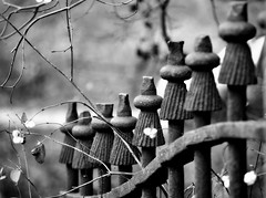 _waiting for old glory (SpitMcGee) Tags: fence iron explore zaun 132 oldglory eisen hff knallerbsen spitmcgee gewöhnlicheschneebeere happyfencefriday alterruhm