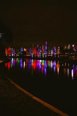 121016-2 (kara_muse) Tags: christmaslights vitruvianpark