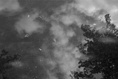 (Jason Clifton) Tags: canon canon5dmarkiii 5dmarkiii 5dm3 ef35mmf14lusm 35mmf14l 35mm 35mml streetphotography amburindia ambur india documentary photojournalism nationalgeographic natgeo primelens nozoom noflash availablelight existinglight naturallight streetportrait indiastories environmentalportrait miami reflection