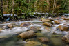 Flowing water (rdpe50) Tags: landscape forest trees creek river water flowing boulders rocks lynncreek northshore lynncanyon lynnvalleypark northvancouver bc longexposure