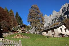 Malga canali (stgio) Tags: malga rifugio malgacanali valcanali primiero tonadico autunno dolomiti escursioni montagna