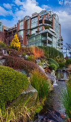 Shoal Point, Victoria BC (Isaac Hilman (@lightofisaac)) Tags: shoalpoint victoria bc canada architecture garden panoramic stitched water plants colours bright vibrant fujifilm xt1 23mmf2wr explorevictoria