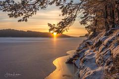 Lights In Winterland (Fredrik Lindedal) Tags: winter winterland ice lake landscape light lindedal sunlight sunrays sunrise sweden skyline sun clouds orange blue color trees glow glimmer morninglight tripod nikon