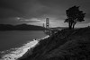 suspension (Andy Kennelly) Tags: golden gate bridge bw san francisco