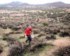 016 Attacking The Ridge (saschmitz_earthlink_net) Tags: 2017 california orienteering vasquezrocks aguadulce losangelescounty laoc losangelesorienteeringclub