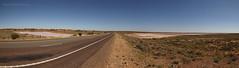 Salt Lakes (Jordan Mulder) Tags: salt lake arid australia dunes chenopds south