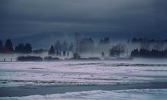Illusions (charhedman) Tags: pittmeadows fog ghost eerie ilovethefog foggynight snow