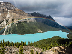 Canadian Rainbow (Feldore) Tags: rockies lake rainbow blue mountains feldore mchugh olympus peyto glacial icefields turquoise landscape canada canadian e510