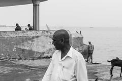 @Agni Theertham,Rameswaram. (vjisin) Tags: rameswaram india asia tamilnadu incredibleindia outdoor sea indianocean streetphotography street indianstreetphotography indianculture agnitheertham pilgrims bath soul peace sacred sacredness hinduritual culture blackandwhite monochrome bird
