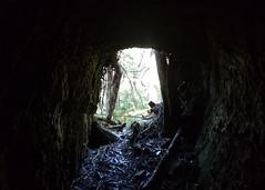 Wombat mine shafts (Wintrmute) Tags: mine shaft wombat stateforest victoria gold