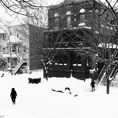 Rien ne nous arrêtera... on sort faire les courses... (woltarise) Tags: montréal delaroche rue plateau neige tempête hiver passantes streetwise