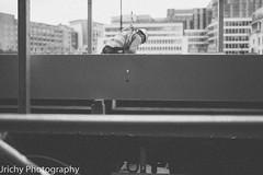 untitled-11639.jpg (jonneymendoza) Tags: chosenones lightroomedited people flickr followme capture windowsbasededitor londonphotographer ruleofthirds beautiful hqglobe life jrichyphotography vision borninlondon masterofphotography happy passion