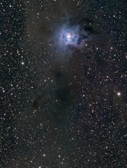 The Iris Nebula (drdavies07) Tags: equinox ngc7023 irisnebula qsi583 caldwell4 lbn487 ed120 vdb139