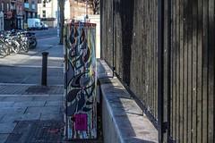 CITY FOX BY BRIDGET NI DHUINN BELCHER [BOLTON STREET]-110289