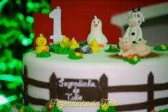 FAZENDINHA DO TULIO 2015 FINAL-41 (agencia2erres) Tags: aniversario 1 infantil festa ano fazenda fazendinha
