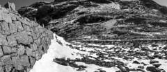 The Wall... (bent inge) Tags: road monochrome norway october hordaland haukeli 2015 odda haukelifjell norwegianmountains bentingeask