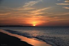 ... o donde amanecen las gaviotas. (RalRuiz) Tags: espaa sol andaluca huelva arena amanecer cielo nubes atlntico islacristina playacentral