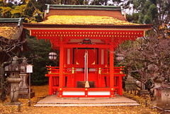 Bold Colour (kewpiedollchan) Tags: japan japanese kyoto shrine traditional kitano tradition tenmangu kamishichiken
