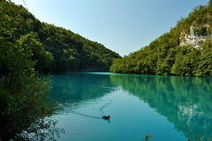 plitvice national park (Mario Barzionni) Tags: park blue wild parco lake verde green nature water beautiful beauty lago waterfall natura acqua azzurro croazia spettacolo plitvice spectacle cascata limpido