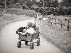 One good thing about having an older brother (katrienberckmoes) Tags: one good thing about having an older brother pulling old wooden wagon sisters inside wheelbarrow bokrijk belgium blackandwhite
