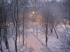 snow is my love (VERUSHKA4) Tags: canon europe russia moscow city yard tree fence nature snow neve december winter hiver vue ville view street lamp farole light blue beautiful day album trunk bough branch season house iron detail metallic object road path track astounding image