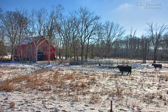 Winter Farm Life (J.L. Ramsaur Photography) Tags: jlrphotography nikond7200 nikon d7200 photography photo macedoniatn middletennessee whitecounty tennessee 2016 engineerswithcameras cumberlandplateau photographyforgod thesouth southernphotography screamofthephotographer ibeauty jlramsaurphotography photograph pic macedonia tennesseephotographer macedoniatennessee winterfarmlife winter winterweather snow snowy cold tennesseehdr hdr worldhdr hdraddicted bracketed photomatix hdrphotomatix hdrvillage hdrworlds hdrimaging hdrrighthererightnow oldbarn redbarn ruralbarn rural ruralamerica ruraltennessee ruralview oldbuildings structuresofthesouth smalltownamerica americana