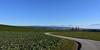 Route de campagne (Diegojack) Tags: paysages campagnes vaud senarclens gollion routes
