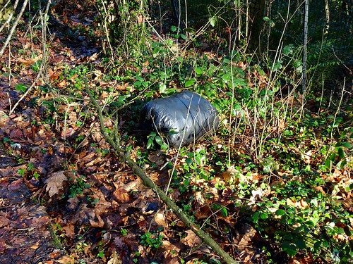 Fly Tipping, The Tump, Springvale, Cwmbran 14 January 2017