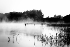 Fishermen (marikoen) Tags: blackandwhite denmark