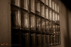 h2o-18 (alanschererphotographer) Tags: sepia blackandwhite color cityscape windows church architecture rose flower