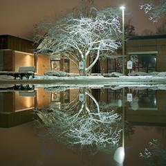 (Patrick J. McCormack) Tags: hasselblad 500cm kodak portra winter snow night reflection