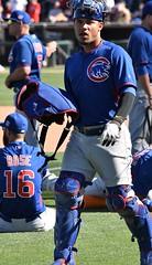 WillsonContreras (jkstrapme 2) Tags: baseball jock catcher bulge crotch cup jockstrap