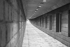 2lost2 (Elios.k) Tags: horizontal outdoors people oneperson man small silhouette distance tunnel dof depthoffield focusinbackground foregroundblur walk walking pedestrian passage corridor perspective vanishingpoint long blackandwhite monochrome bw travel travelling august 2016 summer vacation canon 5dmkii camera photography seoul korea southkorea asia