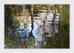 - DSC_1075 (Ferruccio Jochler) Tags: mirror water lake nature reflect forest