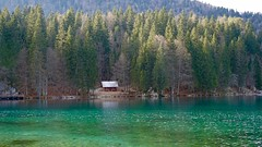 DSC01926 (DSolan) Tags: italy lake fusine nature outdoors green sky clean travel people contrast shadow reflection trees dark light mountain colour minimal europe walk journey hike day