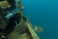 _MG_7296 (Stig Sarre) Tags: thistlegorm red sea redsea egypt scuba diving scubadiving dykking wreck vrak