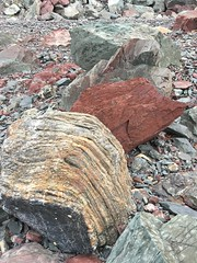 Rock Textures and Tones Red Rocks Coastal Track Wellington New Zealand (In Memoriam Ngaire Hart) Tags: iphone natureabstract rock geology coast coastal red gravel grey texture tone hard surface shattered fragments russet iron cookstrait ngairehart eriagn ngairelawson wellington newzealand fracture fracturing layers layering geological