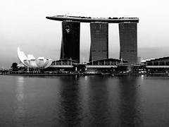 Marina Bay en blanco y negro (Bonsailara1) Tags: blackandwhite building blancoynegro skyline architecture skyscraper arquitectura singapore edificio singapur rascacielos marinabay bonsailara1