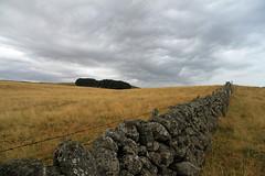 Aubrac (Yvan LEMEUR) Tags: landscape nuages paysage ambiance randonne aveyron aubrac midipyrnes muret lozre muretdepierressches
