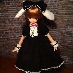 Azone Classic Alice Tick Tock Himeno (Cows Toys) Tags: cute classic ex toys dolls alice tick tock pure neemo himeno azone