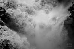 Athabasca Falls (Romain Di Costanzo) Tags: canada jasper alberta rockiescanadajasperbanff
