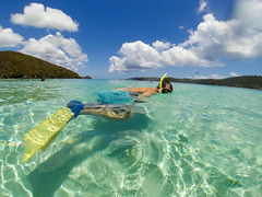 USVI Summer Vacation 2015-39.jpg (MudflapDC) Tags: ocean vacation beach snorkel stjohn claudio stthomas kokibeach virginislands usvi