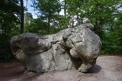 Rocher de l'éléphant - elephant rock