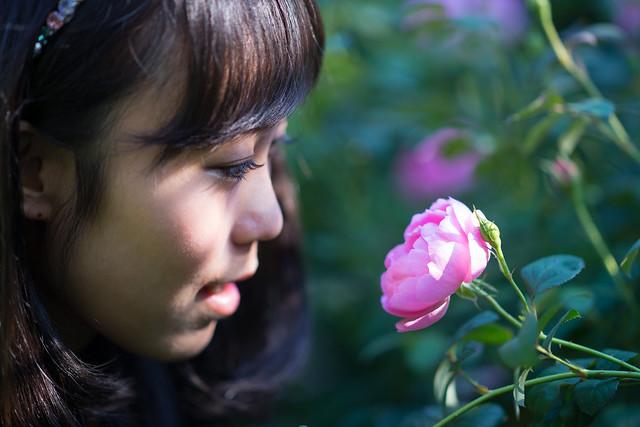 English garden 04