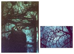 Thomas Dylan. (Javi.H) Tags: portrait dylan film artwork thomas cover pelicula portra fotografo chove analogic analogico wwwjaviersuarezes