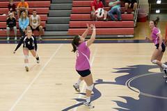 DAVE2225 (David J. Thomas) Tags: sports athletics women volleyball arkansas scots batesville lyoncollege philandersmithcollege