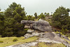 El Jaguar (Xavy Vp) Tags: de mexico nikon stones valle valley puebla piedras vp xavy encimadas 1224mmf4 d7100