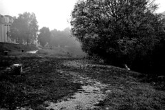 Fog at the end of the road (hirondelleblond) Tags: blackandwhite ambient padua